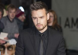 Liam Payne desea ver a One Direction reunido de nuevo