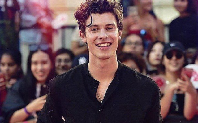 Shawn Mendes enseña sus golpes tras accidente